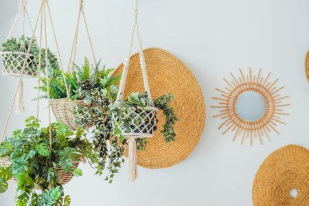 Hanging Plants in Macrame